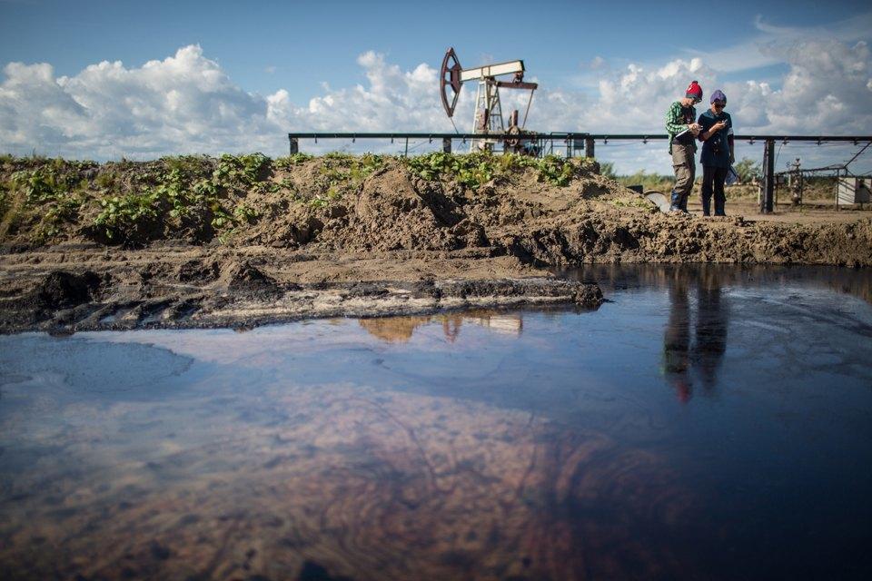 Как леса Коми очищают от нефти. Изображение № 29.