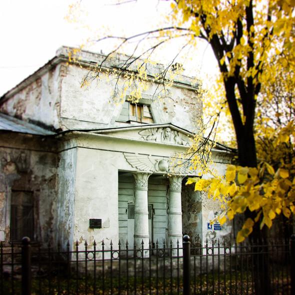 В зоне риска: Египетский павильон и Померанцева оранжерея в Кузьминках. Изображение № 5.