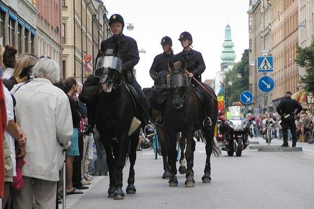 Иностранный опыт: Как геи работают в шведской полиции. Изображение № 4.