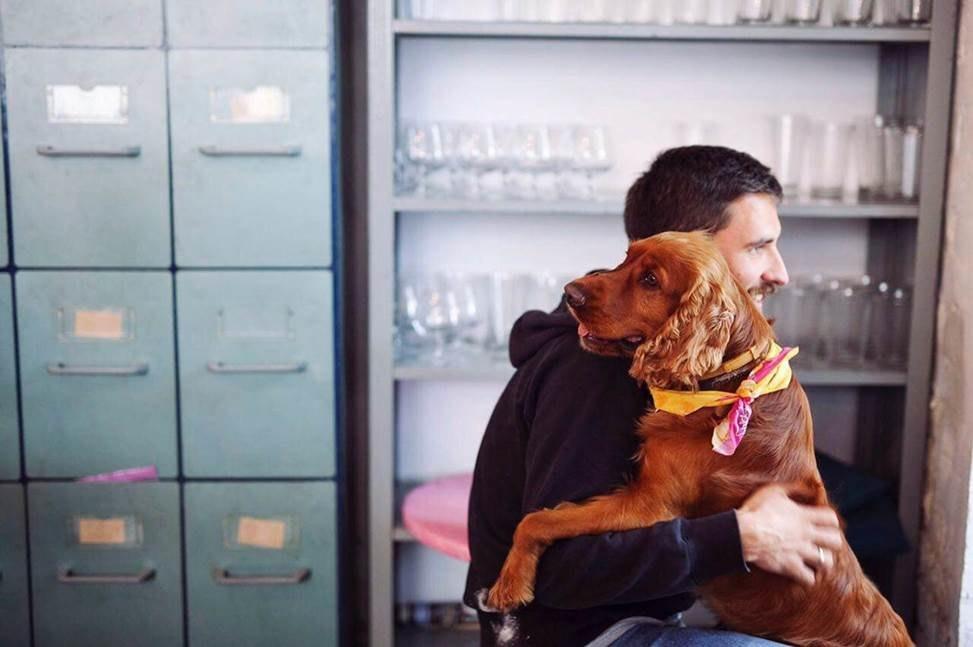 10 мест, куда пускают с домашними животными в Москве. Изображение № 9.