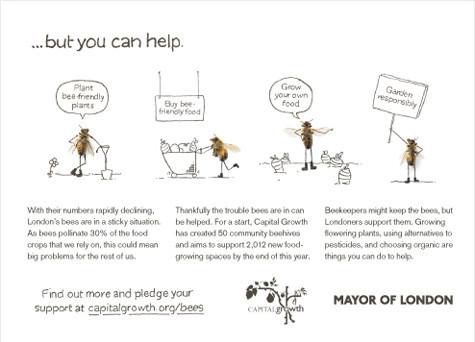 Как у них: «Городские пчёлы» в Лондоне. Изображение № 6.