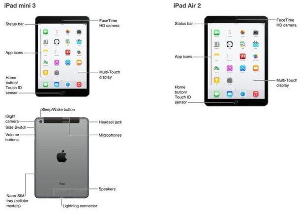 Apple ошибочно показала новые iPad. Изображение № 1.