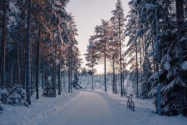 Консультант мэрии финского Оулу — о зимнем велодвижении. Изображение № 5.