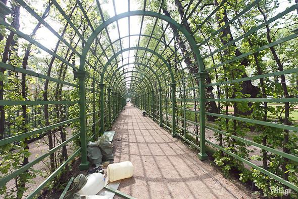 Фоторепортаж: Летний сад после реставрации. Изображение № 36.