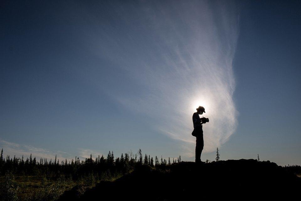 Как леса Коми очищают от нефти. Изображение № 12.