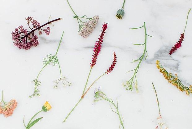 Раз ромашка, два ромашка: Из каких цветов и растений делать букеты на даче. Изображение № 3.