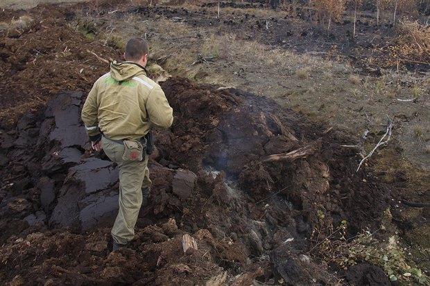 Greenpeace опричинах октябрьского смога вМоскве. Изображение № 6.