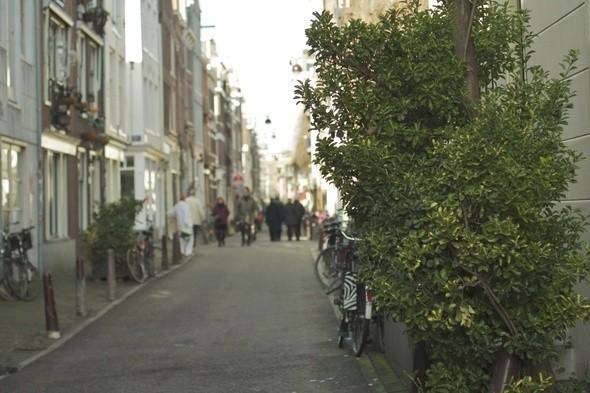 Пешеходный переулок в старейшем городском квартале Jordaan. Изображение № 10.