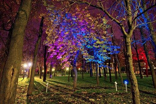 Сад имени Баумана осветили по-новому. Изображение № 1.