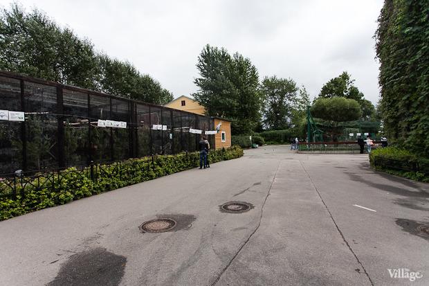 Как живёт и меняется Ленинградский зоопарк . Изображение № 16.