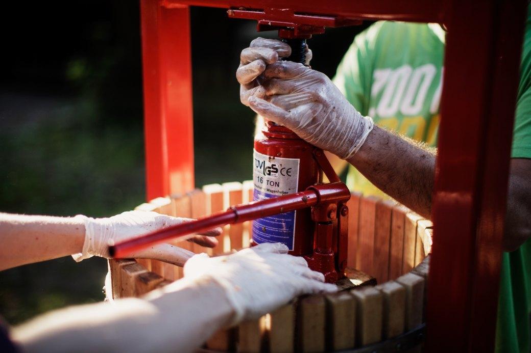 Партия «Яблоко»: Как организовать производство сидра на даче . Изображение № 10.