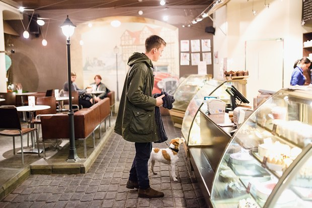 Вкакие кафе пускают ссобакой. Изображение № 4.