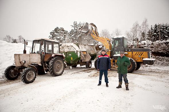 На зиму заготавливают около 10 тыс. тонн силоса. Изображение № 16.