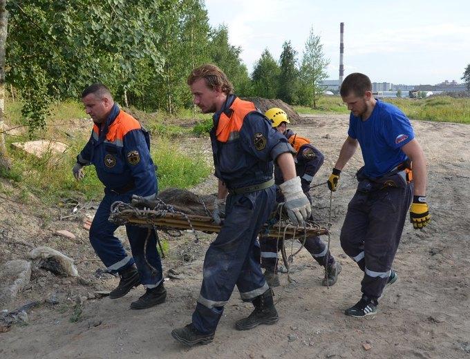 Фото предоставлено администрацией Приморского района Петербурга. Изображение № 7.