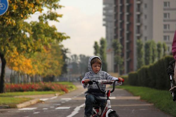 Каждый год в районе будут открывать 10 км велодорожек. Изображение № 41.