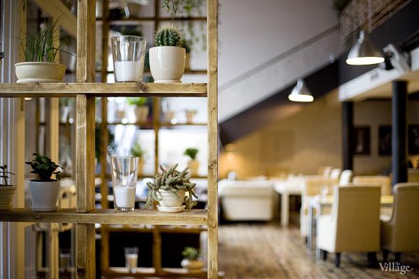 Новое место: Starики bar. Изображение № 8.