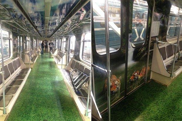 Новый поезд метро «Полосатый рейс» с фотографиями тигров. Изображение № 1.