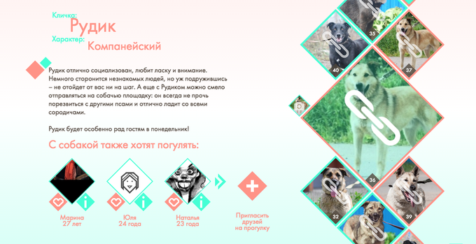 В Петербурге заработал сервис свиданий ссобаками изприюта . Изображение № 1.