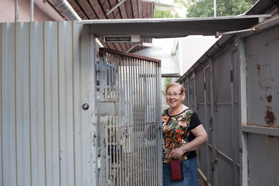 Биолог Елена Мигунова онаглости белок, хищных птицах вКремле иоботношении москвичей кживотным. Изображение № 5.