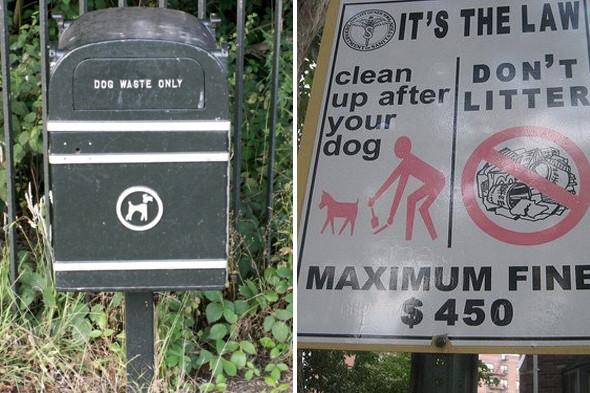 Московские власти взялись за «собачьи туалеты». Изображение № 4.