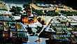 Изображение 5. Итоги недели: пространство «Тайга», «Мини-город» и Международный экономический форум.. Изображение № 1.