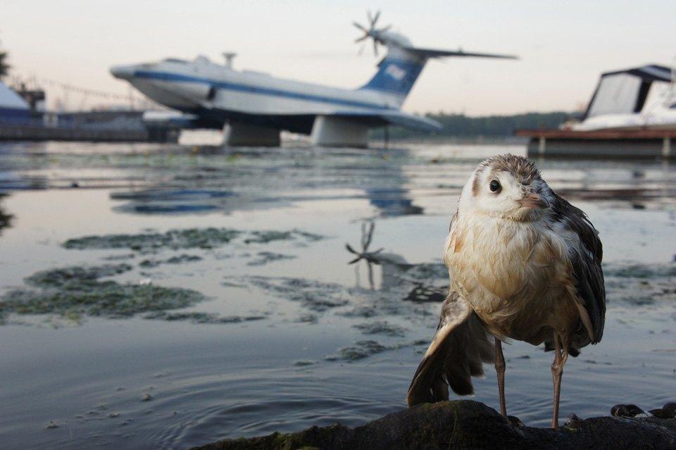 Камера наблюдения: Москва глазами Игоря Стомахина. Изображение № 14.