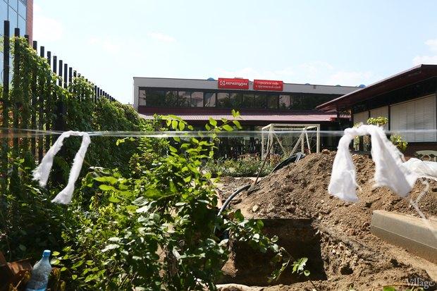 Фото дня: Что происходит укафе «Хачапури». Изображение № 5.