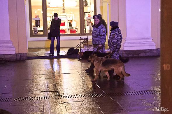 Кинологи с собаками патрулируют район. . Изображение № 12.