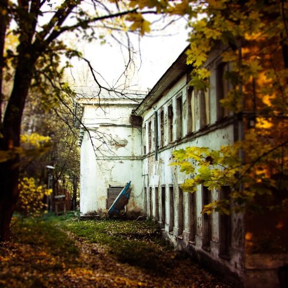 В зоне риска: Египетский павильон и Померанцева оранжерея в Кузьминках. Изображение № 15.