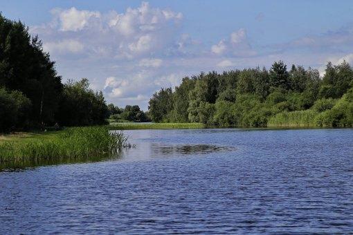 В Приморском районе появится экопарк. Изображение № 1.
