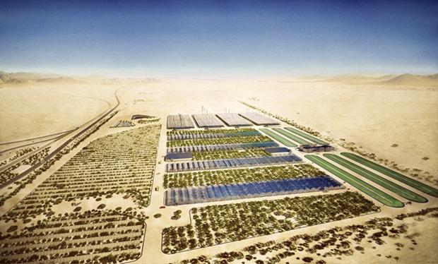 Дизайн от природы: Дом-термитник, жилая дюна и оранжереи в пустыне. Изображение № 20.