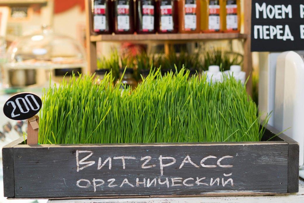 Что есть на Даниловском рынке прямо сейчас. Изображение № 22.
