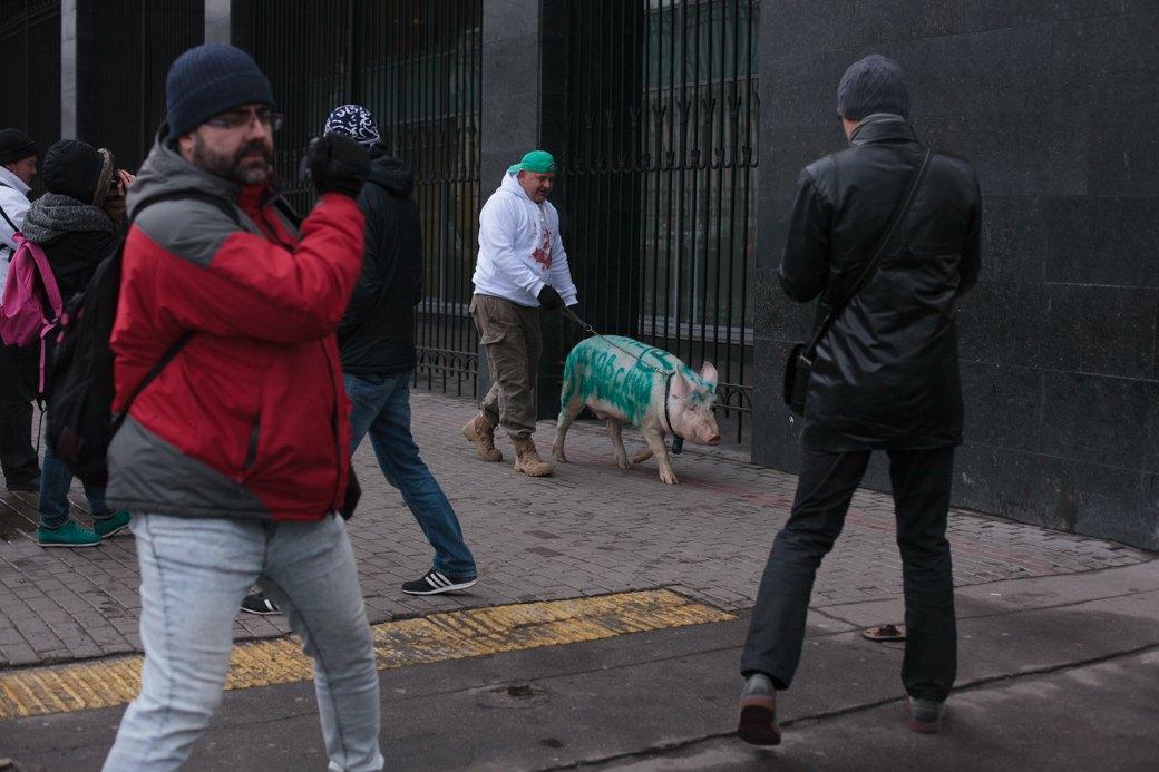 Как паркмен и боров пикетировали московский департамент транспорта. Изображение № 3.