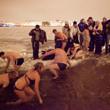 К 2015 году на пляжах Невы можно будет купаться. Изображение № 1.