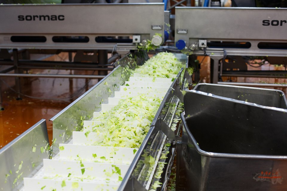 Производственный процесс: Как делают салаты для McDonald's. Изображение № 22.