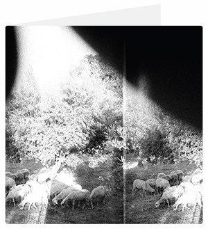 15альбомов весны. Изображение № 3.