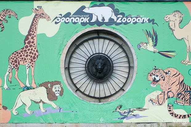 Как живёт и меняется Ленинградский зоопарк . Изображение № 4.