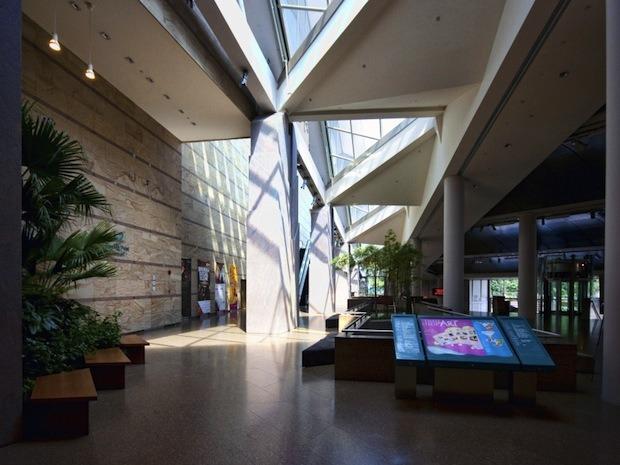 Дизайн от природы: Дом-лотос и супердеревья в Сингапуре. Изображение № 8.