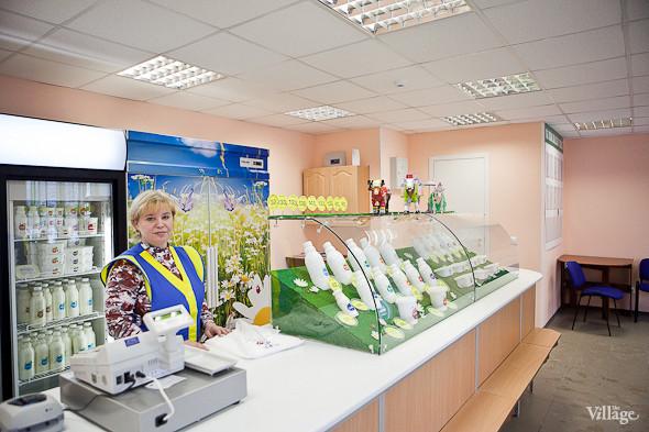 Репортаж: Как делают молочные продукты в «Лосево». Изображение № 52.