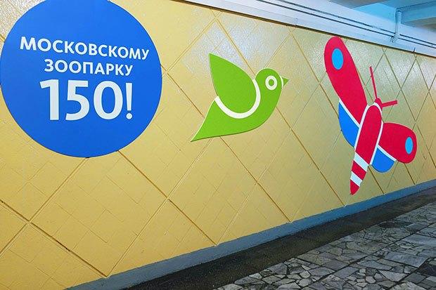Московскому зоопарку разработали праздничный фирстиль. Изображение № 7.