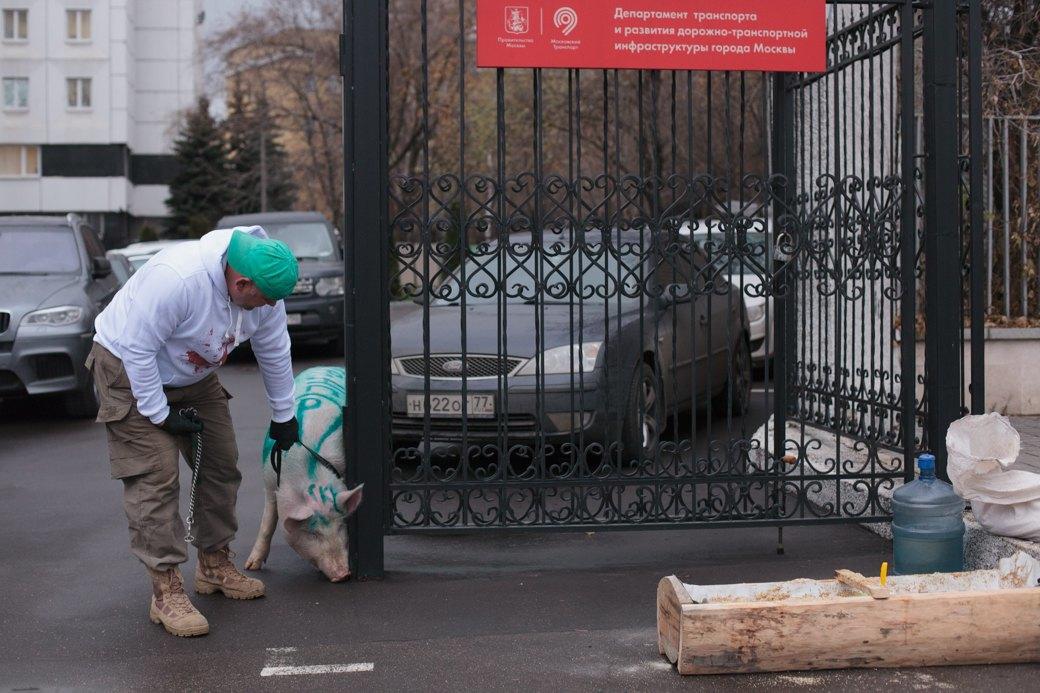 Как паркмен и боров пикетировали московский департамент транспорта. Изображение № 6.