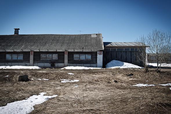 Народное хозяйство: 5 ферм, продукты которых можно купить в Петербурге. Изображение № 62.