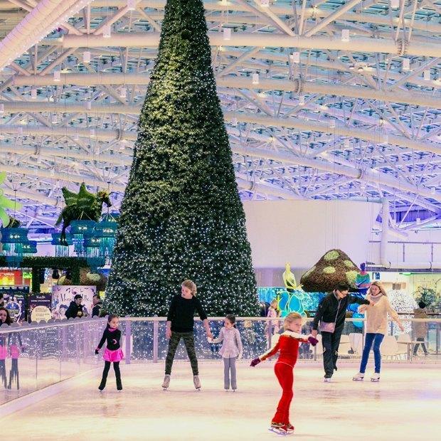 Новогодние елки, каток, детские спектакли и другие развлечения. Изображение № 5.