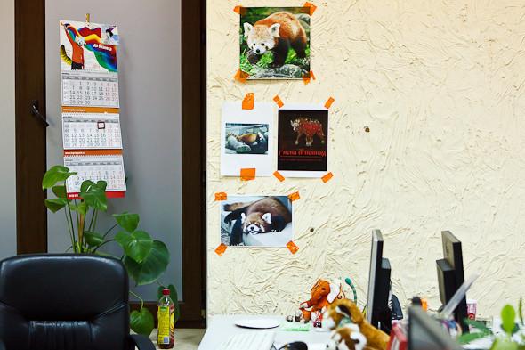 Офис недели (Петербург): DataArt. Изображение № 34.