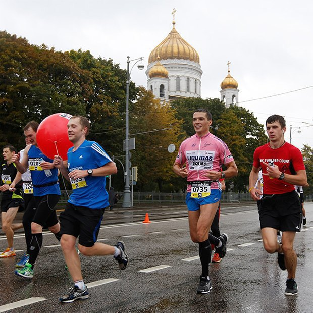 Ретроспектива Уэса Андерсона, новые выставки в МАММ и Московский марафон. Изображение № 11.