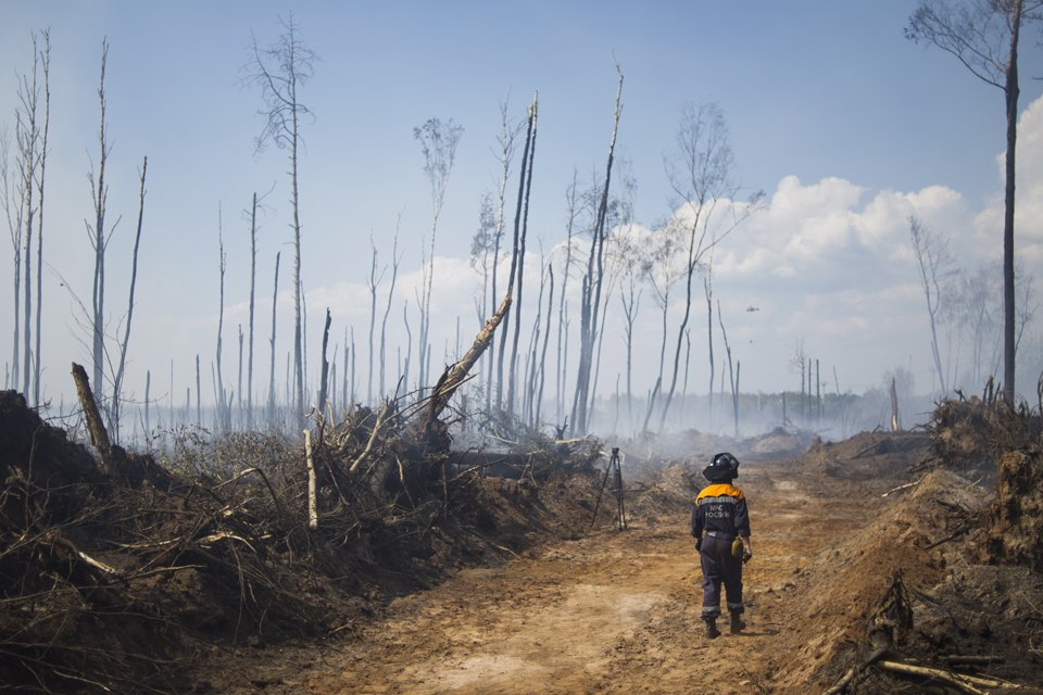 Как тушат лесные пожары вТверской области. Изображение № 5.