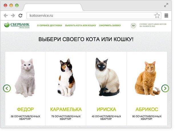Сбербанк запустил сервис доставки котов нановоселье. Изображение № 1.