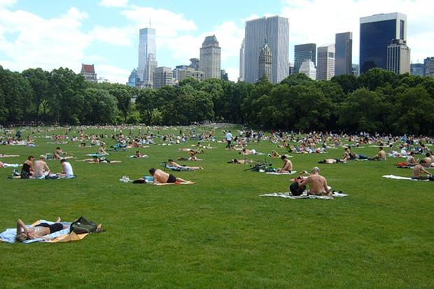 Интервью: Директор Центрального парка Нью-Йоркао привлечении инвестиций, площадке и «Зарядье». Изображение № 35.