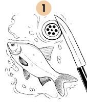 Рецепты шефов: Филе плотвы с хрустящей корочкой. Изображение № 3.