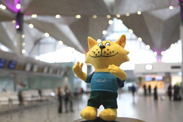У аэропорта Пулково появился игрушечный кот-талисман. Изображение № 3.